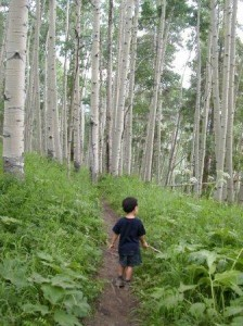 little boy hiking in the woods