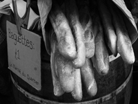 black and white image of baguettes